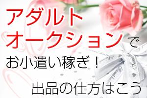 ksj_オク_eye